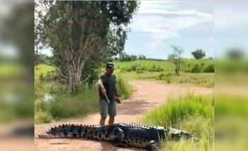 Ahuyentó a cocodrilo de cinco metros y 300 kilos con un palito de madera