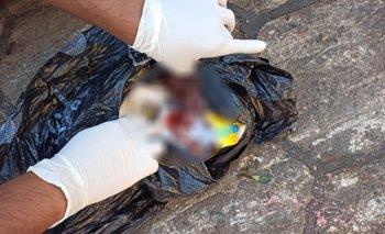 Comerciantes encuentra un feto en la basura